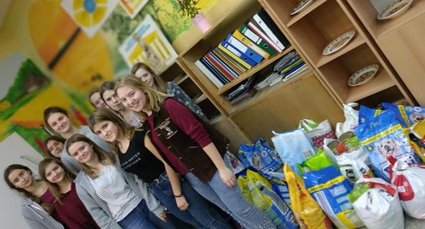 Szkoły podstawowe, Szkolny Wolontariat Podaj Łapę Brześciu Kujawskim zakończył akcję! - zdjęcie, fotografia