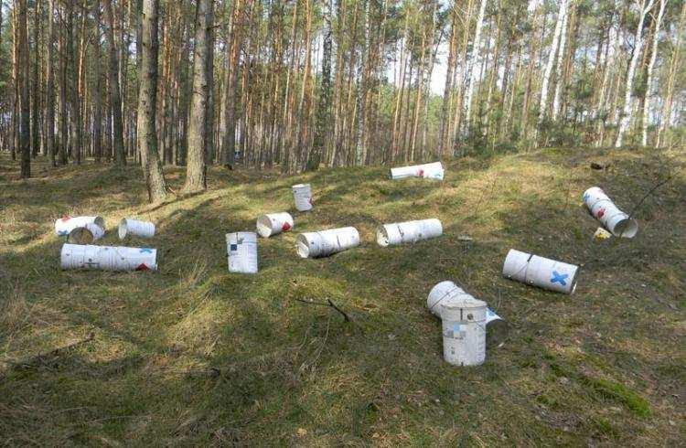 Ludzie_, Kilkadziesiąt pojemników znaleziono lesie - zdjęcie, fotografia