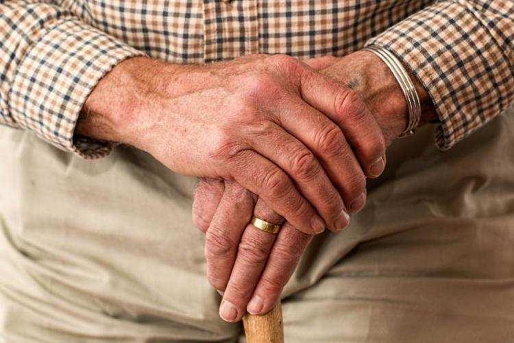 Biznes i polityka, Rząd przywraca emerytalny - zdjęcie, fotografia