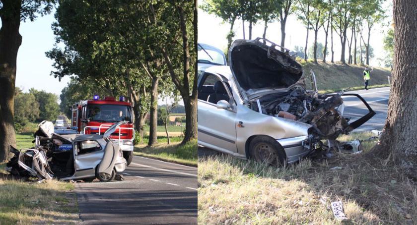 Wypadki drogowe, Śmiertelny wypadek Kruszwicą Samochód uderzył drzewo - zdjęcie, fotografia
