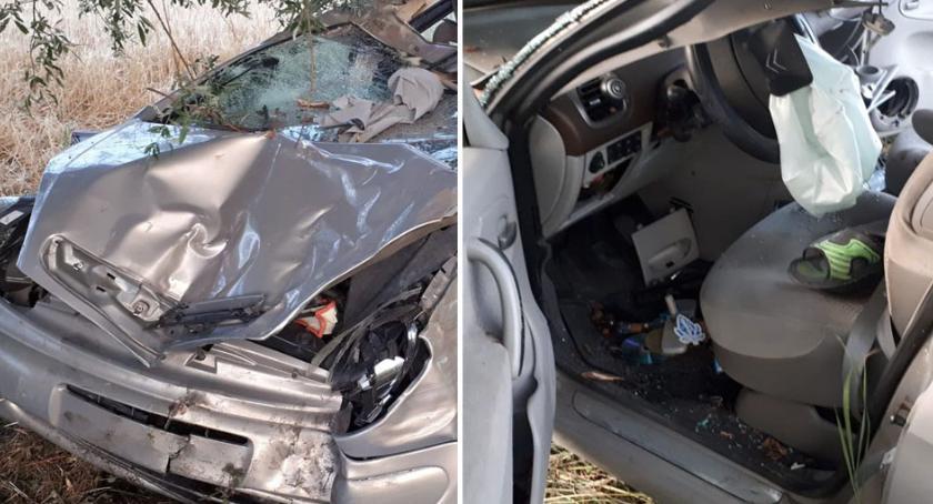Wypadki drogowe, Wypadek Łąkiem Samochód uderzył drzewo Sprawca odkręcił tablice rzucił ucieczki - zdjęcie, fotografia