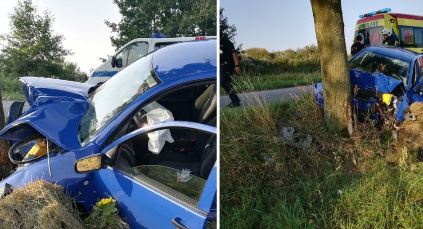 Wypadki drogowe, Groźny wypadek powiecie aleksandrowskim Skoda wbiła drzewo [FOTO] - zdjęcie, fotografia