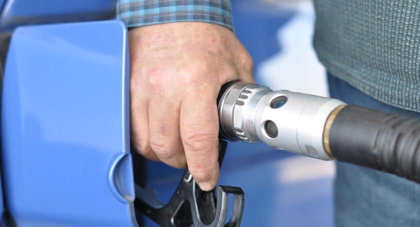 Komunikaty, Kontrole stacji paliw jakość paliw Włocławku regionie - zdjęcie, fotografia