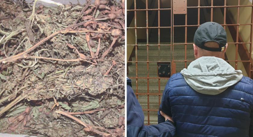 Sprawy kryminalne - kronika, Narkotyki Gminie Izbica Kujawska Funkcjonariusze zatrzymali latka - zdjęcie, fotografia