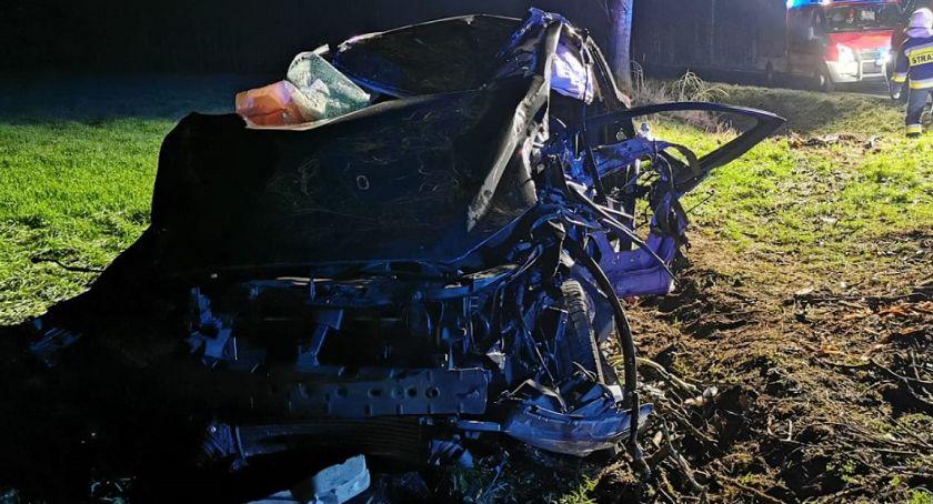 Wypadki drogowe, Wypadek Puszczy Miejskiej Zderzył łosiem uderzył przepust potem drzewo [ZDJĘCIA] - zdjęcie, fotografia