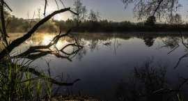 Tragedia nad wodą: W stawie utonął 2-letni chłopczyk