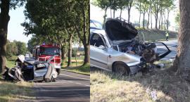 Śmiertelny wypadek pod Kruszwicą. Samochód uderzył w drzewo