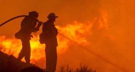 Pożar pod Włocławkiem. Trzy jednostki w akcji