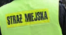 Bójka na ulicy Ogniowej we Włocławku. Użyto gazu łzawiącego