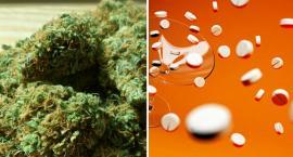 Marihuana, amfetamina i kokaina we Włocławku. Policjanci wykryli jej duże ilości
