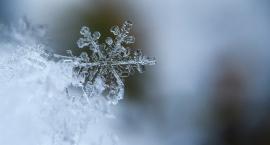 Jaka pogoda we Włocławku i okolicach na nadchodzące dni?