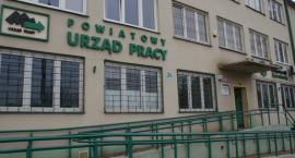 Praca we Włocławku i okolicach. Urząd Pracy organizuje staże