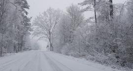 Zimowe odśnieżanie we Włocławku. Kto odśnieża nasze drogi?