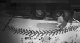 Ukradł kilka tysięcy utargu z ciężarówki. Pieniądze schował w skarpecie [VIDEO]