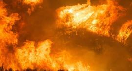 Pożar w Mariankach w powiecie włocławskim. Zginęła kobieta
