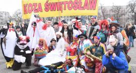 Korowód Grup Zapustnych 2019 we Włocławku. Kozy, diabły, bociany [ZDJĘCIA VIDEO]
