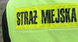 Strażnicy Miejscy ratowali mężczyznę we Włocławku. Musieli wybić szybę w aucie