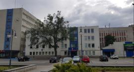 Urząd Miasta we Włocławku szuka chętnych na stanowiska pracy