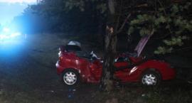 Tragiczny wypadek pod Solcem Kujawskim. Samochód uderzył w drzewo. Nie żyje 29-latek
