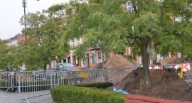 Szczątki ludzkie na Zielonym Rynku we Włocławku