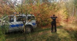 Całonocne poszukiwania 83 latki w regionie. W akcji policyjne psy i służba leśna