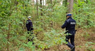 Akcja poszukiwawcza w powiecie lipnowskim. 4 grzybiarzy zaginęło w lesie