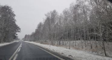 Zima we Włocławku i powiecie. Jaka pogoda na Święta i najbliższe dni? [VIDEO]