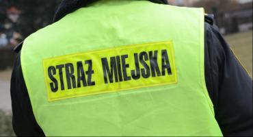 Martwy mężczyzna przy ulicy Toruńskiej we Włocławku. Sprawę bada policja