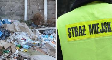 Straż Miejska we Włocławku ruszyła na kontrole. Za łamanie prawa grożą kary