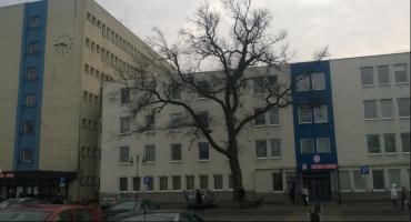 Urząd Miasta we Włocławku zatrudnia. Aplikuj, czasu jest niewiele