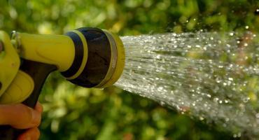 Pojawiły się zakazy podlewania ogródków. Za ich łamanie grożą kary nawet do 5 tys