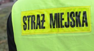 Atak na Strażnika Miejskiego we Włocławku. Funkcjonariusza zamroczyło