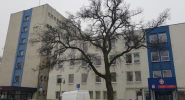 Praca we Włocławku. Urząd Miasta szuka chętnych na 4 stanowiska